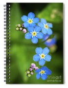 Group Of Blue Flowers Forget-me-not Spiral Notebook