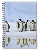 Group Of Emperor Penguins Spiral Notebook