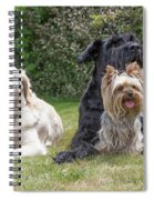 Group Of Three Dogs Spiral Notebook