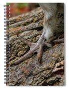 Grouse Feet Spiral Notebook