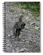 Grouse Pair Spiral Notebook