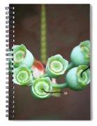 Growing Blueberries Spiral Notebook