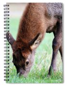 Growing Fast  Spiral Notebook