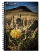 Growing From Volcanos Spiral Notebook