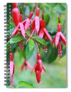 Growing In Red And Purple Spiral Notebook