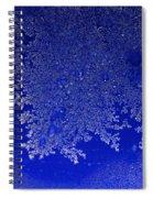 Growing Insight Spiral Notebook