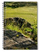 Growing On Rocks. Spiral Notebook