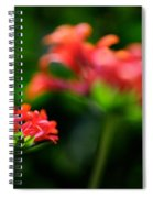 Growing Up Spiral Notebook