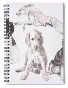 Growing Up Saluki Spiral Notebook