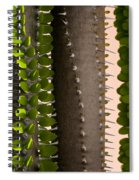Growth Contrast 2 Spiral Notebook