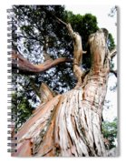 Growth Spiral Notebook