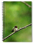 Grumpy Hummer Spiral Notebook