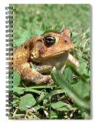 Grumpy Toad Spiral Notebook