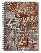 Grunge Background Spiral Notebook
