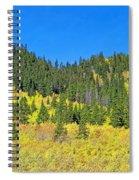 Guanella Pass Study 1 Spiral Notebook