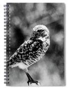 Guard Duty Bw Spiral Notebook