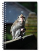 Guardian Mother 2 Spiral Notebook