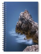 Guardian Of The Sea Spiral Notebook