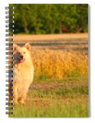 Guarding The Wheat Spiral Notebook