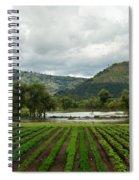Guatemalan Nursery And Lake Spiral Notebook