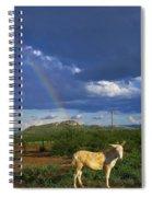 Guero Spiral Notebook