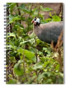 Guineafowl 3 Spiral Notebook