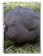 Guinnea Fowl On The Run Spiral Notebook