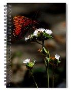 Gulf Fritillary Butterfly Too Spiral Notebook