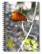 Gulf Fritillary Flying Spiral Notebook