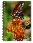 Gulf Fritillary On Butterflyweed Spiral Notebook