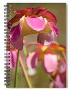 Gulf Purple Pitcher Plant Spiral Notebook
