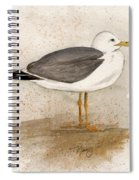 Gull Spiral Notebook