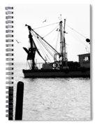 Gulls 1 Spiral Notebook