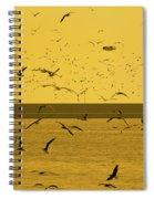 Gulls Orange Tint Spiral Notebook