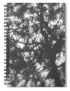 Gunmetal Grey Shadows -  Spiral Notebook