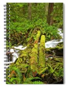 Gushing Through Ferns And Forest Spiral Notebook