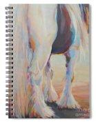Gypsy Falls Spiral Notebook