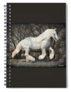 Gypsy Forest Spiral Notebook