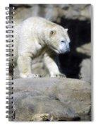 Habitat - Memphis Zoo Spiral Notebook