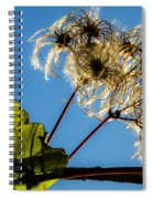 Hairy Beauty Spiral Notebook