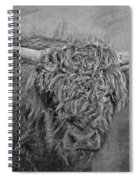 Hairy Highlander Bw Spiral Notebook