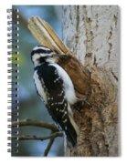 Hairy Woodpecker Spiral Notebook