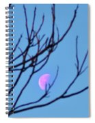 Half Moon Through The Trees Spiral Notebook