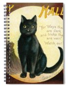 Halloween Greetings With Black Cat And Carved Pumpkins Spiral Notebook