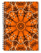 Halloween Kaleidoscope 12 Spiral Notebook