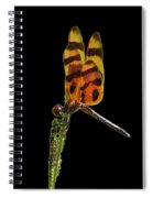 Halloween Pennant Dragonfly .png Spiral Notebook