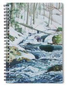 Hamburg Mountain Stream Spiral Notebook