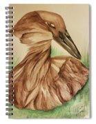 Hamerkop Spiral Notebook