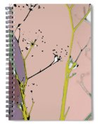 Hamptons Blush Spiral Notebook