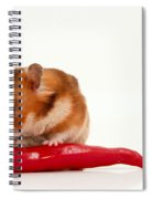 Hamster Eating A Red Hot Pepper Spiral Notebook